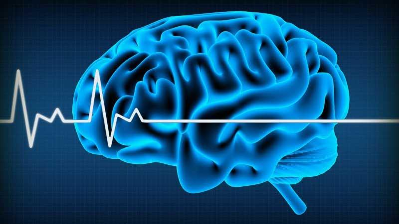 مرگ مغزی چیست؟