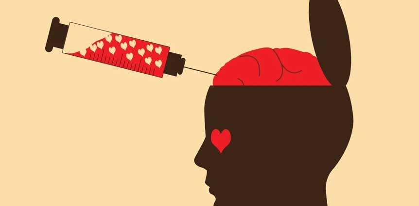 عشق بدن انسان مغز
